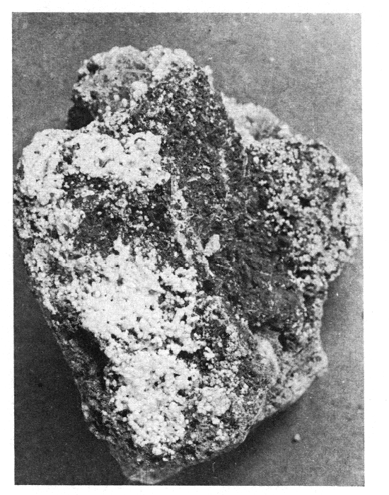 La Kanemite  Nouveau Silicate De Sodium Hydrat U00e9 De N U00e9oformation