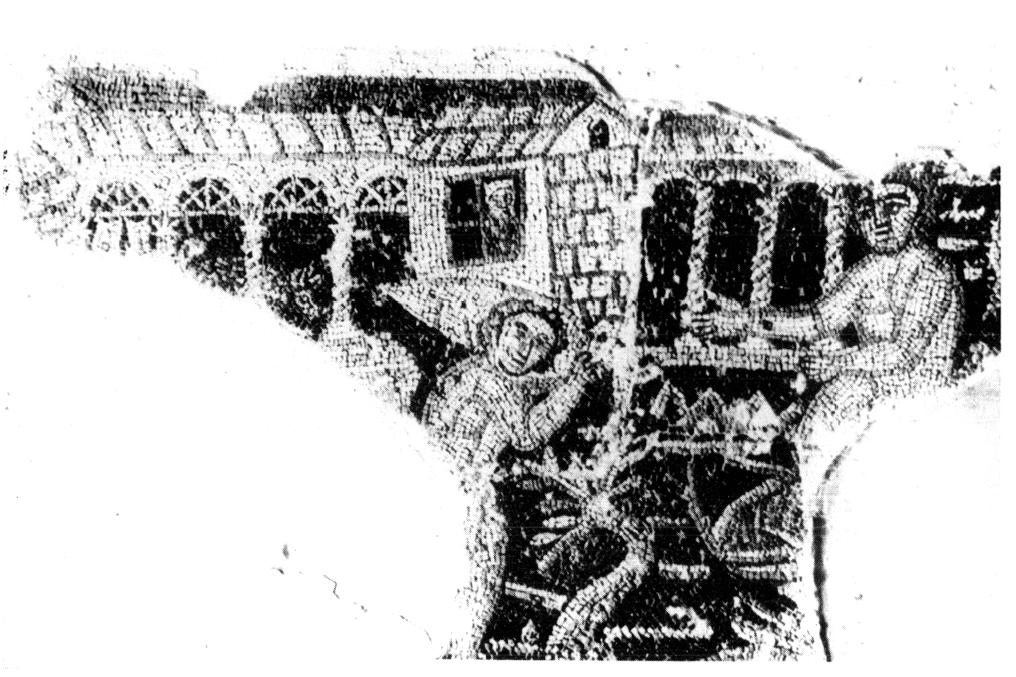 Haus des Esels 8