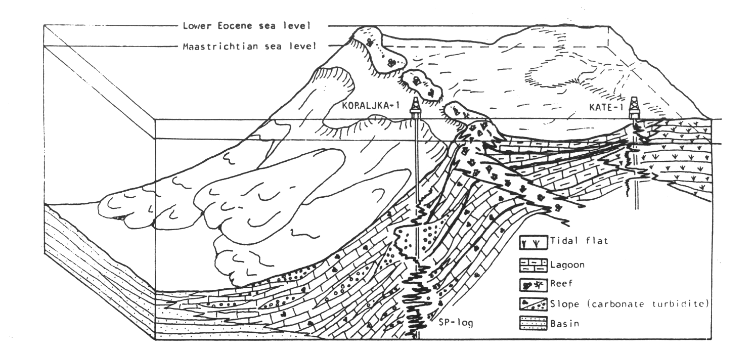 Upper Cretaceous To Eocene Slope And Carbonate Platform