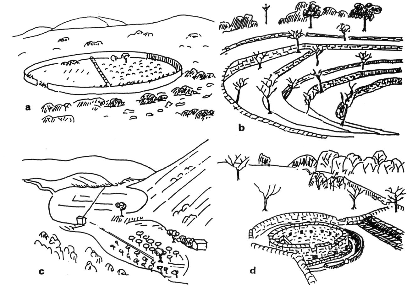 Murettes et terrasses de culture dans les r gions - Images de terrasses amenagees ...