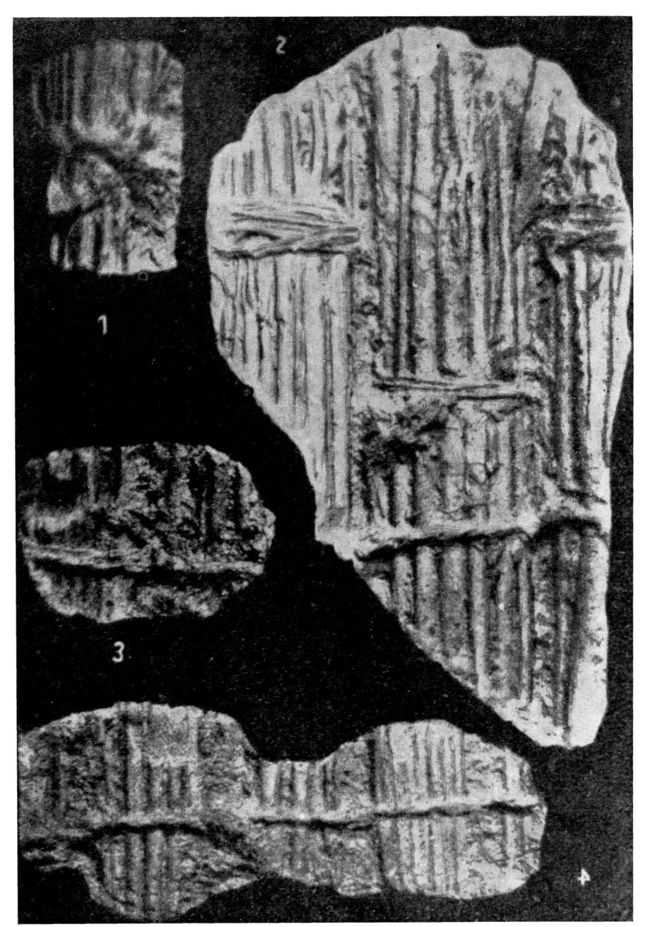 Techniques de pr paration des parois dans la peinture for Les gorges en platre
