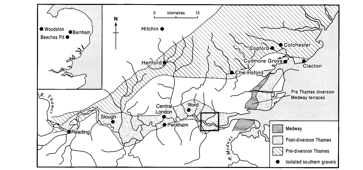 quaternary lithostratigraphy and mammalian biostratigraphy