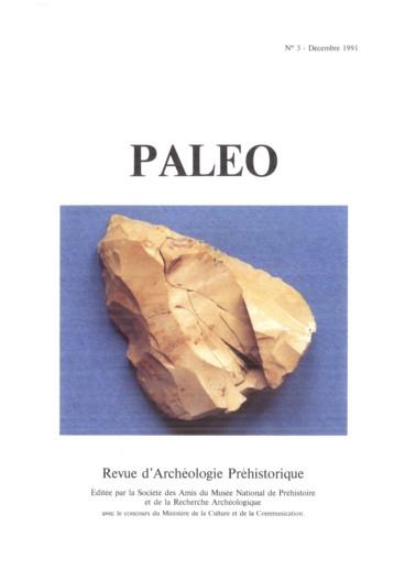Réflexions sur l histoire technique de l Homme   de l évolution ... 86cdb1670d4